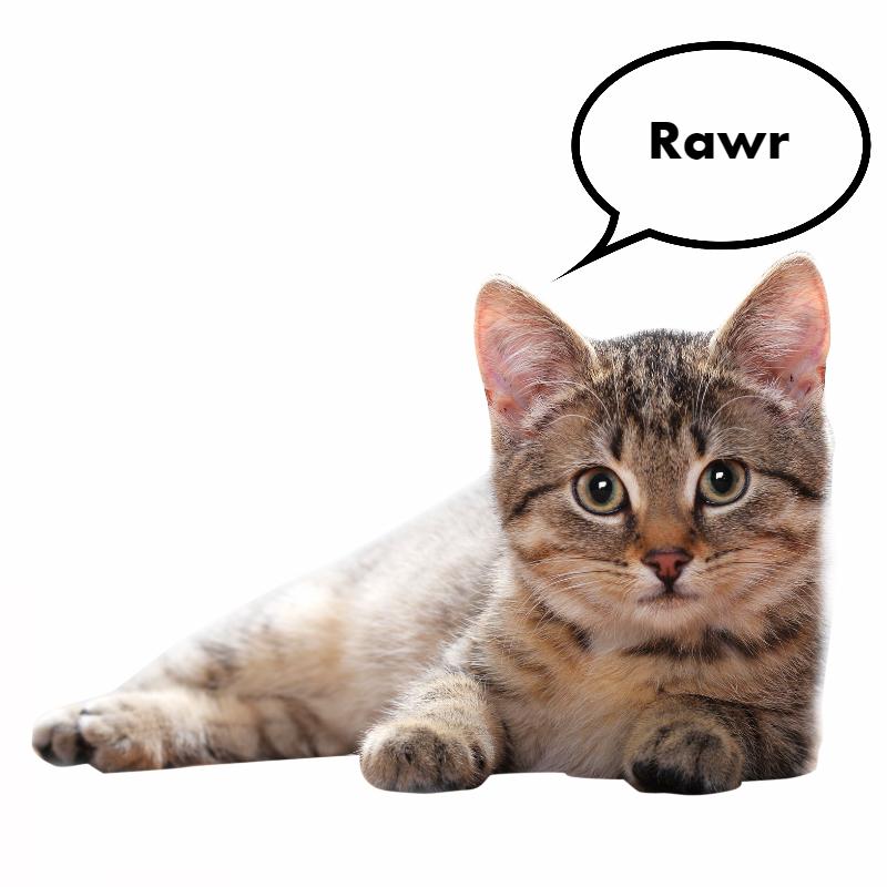Rawr's avatar