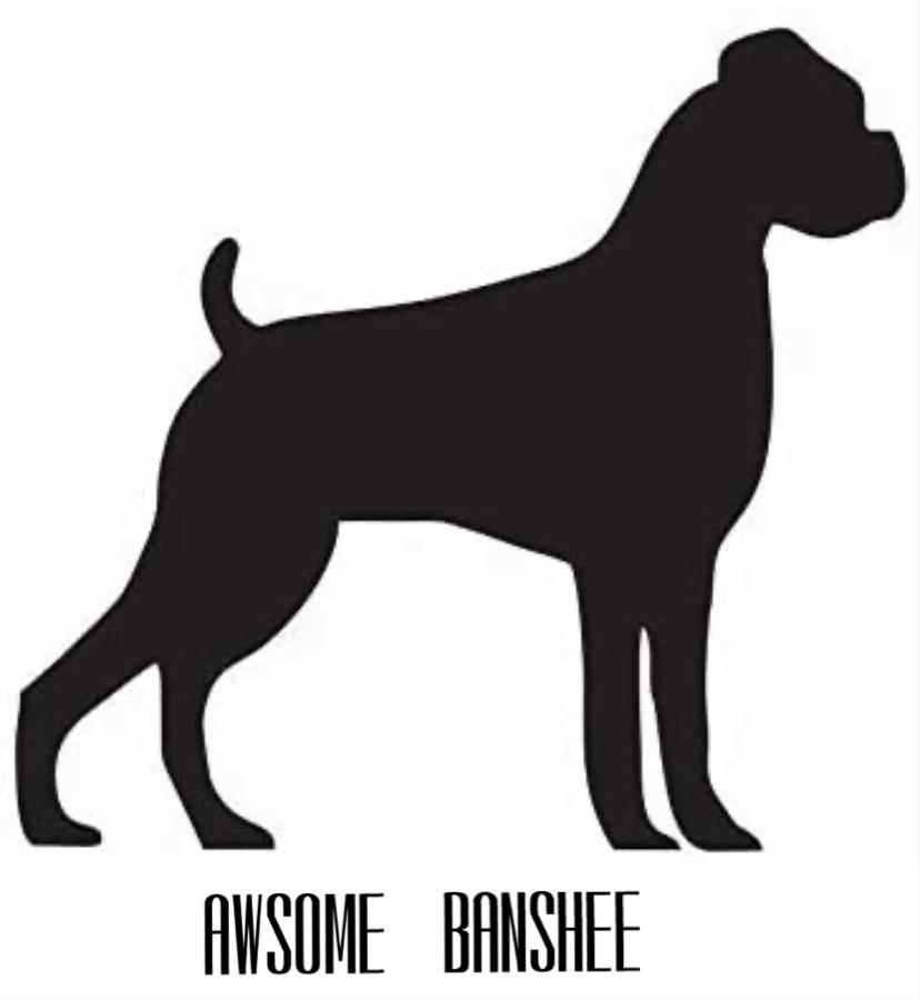 awesome Banshee's avatar
