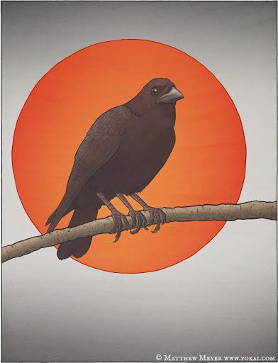 Yatagarasu's avatar